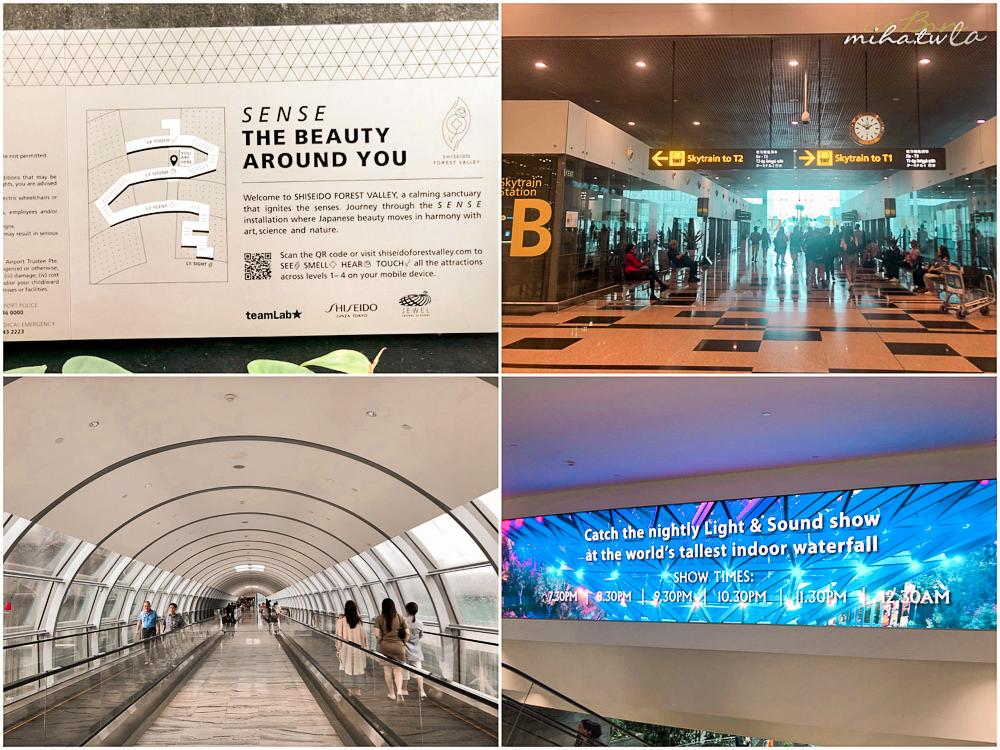 星耀樟宜, 新加坡推薦, 新加坡景點, 新加坡空中花園推薦, 新加坡自由行