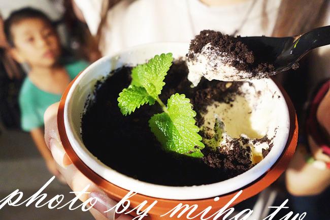 盆栽冰淇淋 冰蹦拉