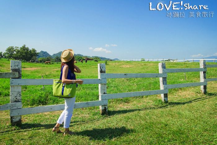 台東景點好玩,牧場,初鹿牧場,親子旅行,滑草