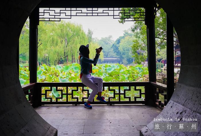 拙政園,蘇州自由行,蘇州博物館,蘇州景點,蘇州住宿,蘇州好玩景點,蘇州住宿